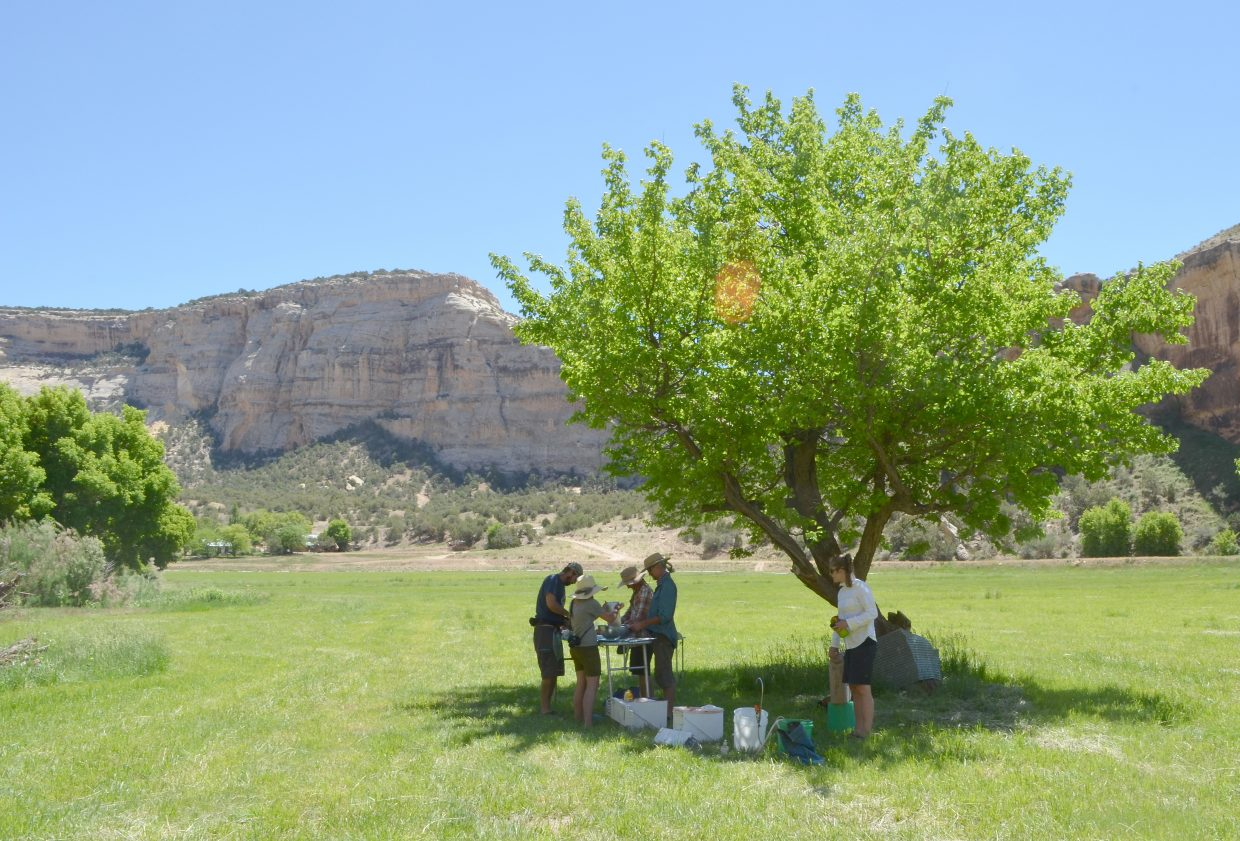 """Members of the Yampa River Awareness raft trip down the rapids of Yampa Canyon were invited to visit the private Mantle Ranch in June and enjoy lunch in the shade of fruit trees. The original planting of the orchards in 1936 is described in Queeda Mantle Walker's 2004 book """"The Mantle Ranch."""""""