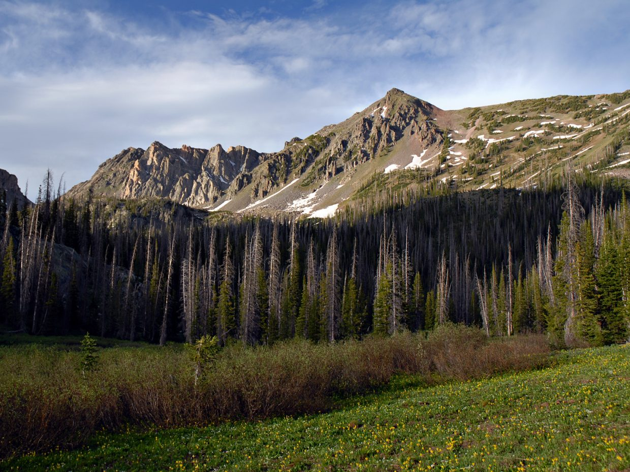 On the trail to Gilpin Lake, Mount Zirkel Wilderness Area. Submitted by: Jeff Hall