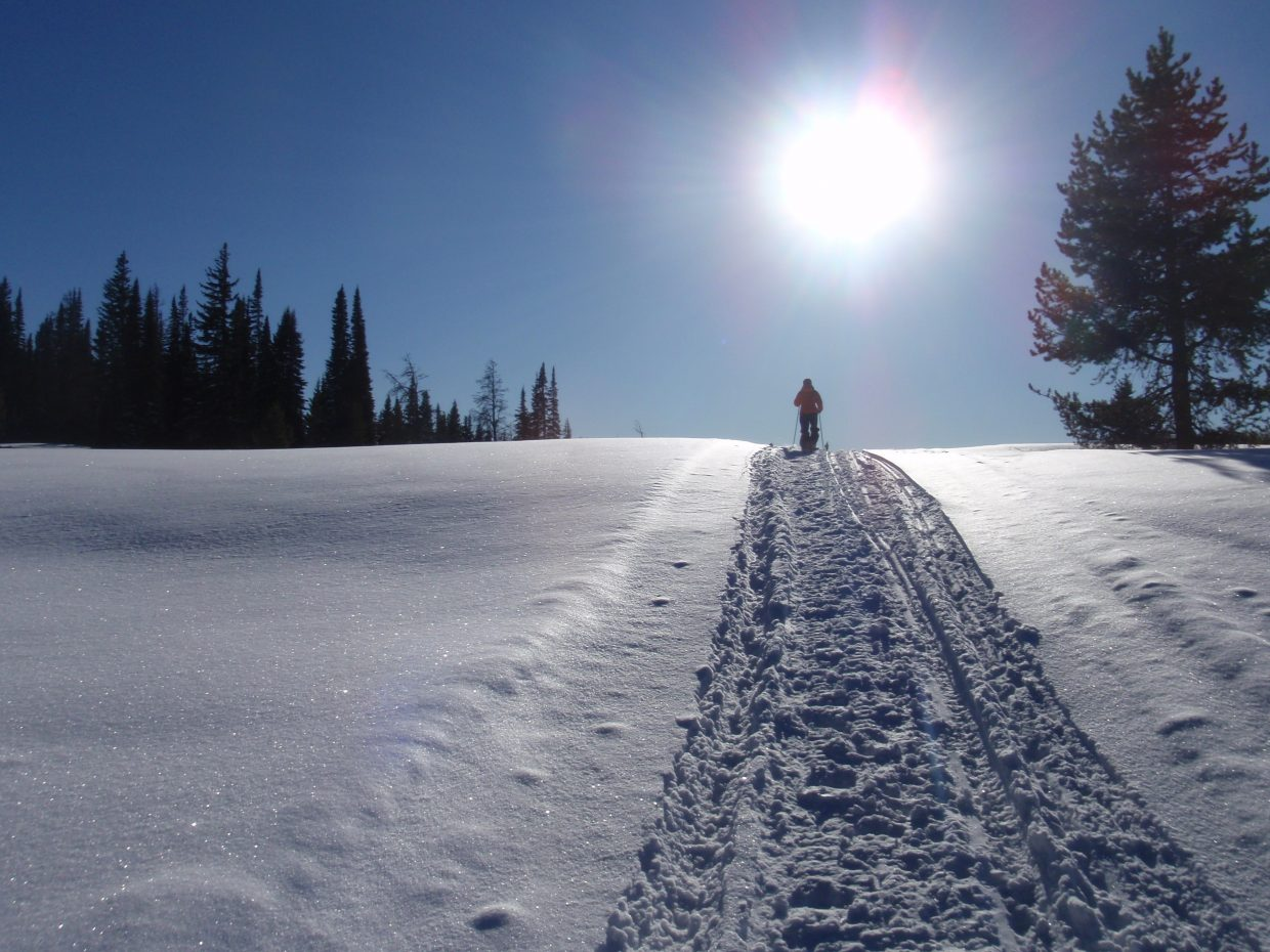 Pattie Moon snowshoeing on Rabbit Ears Pass with her dogs Kip and Joy on Dec. 9.Submitted by: Marie-Beth Cheezem