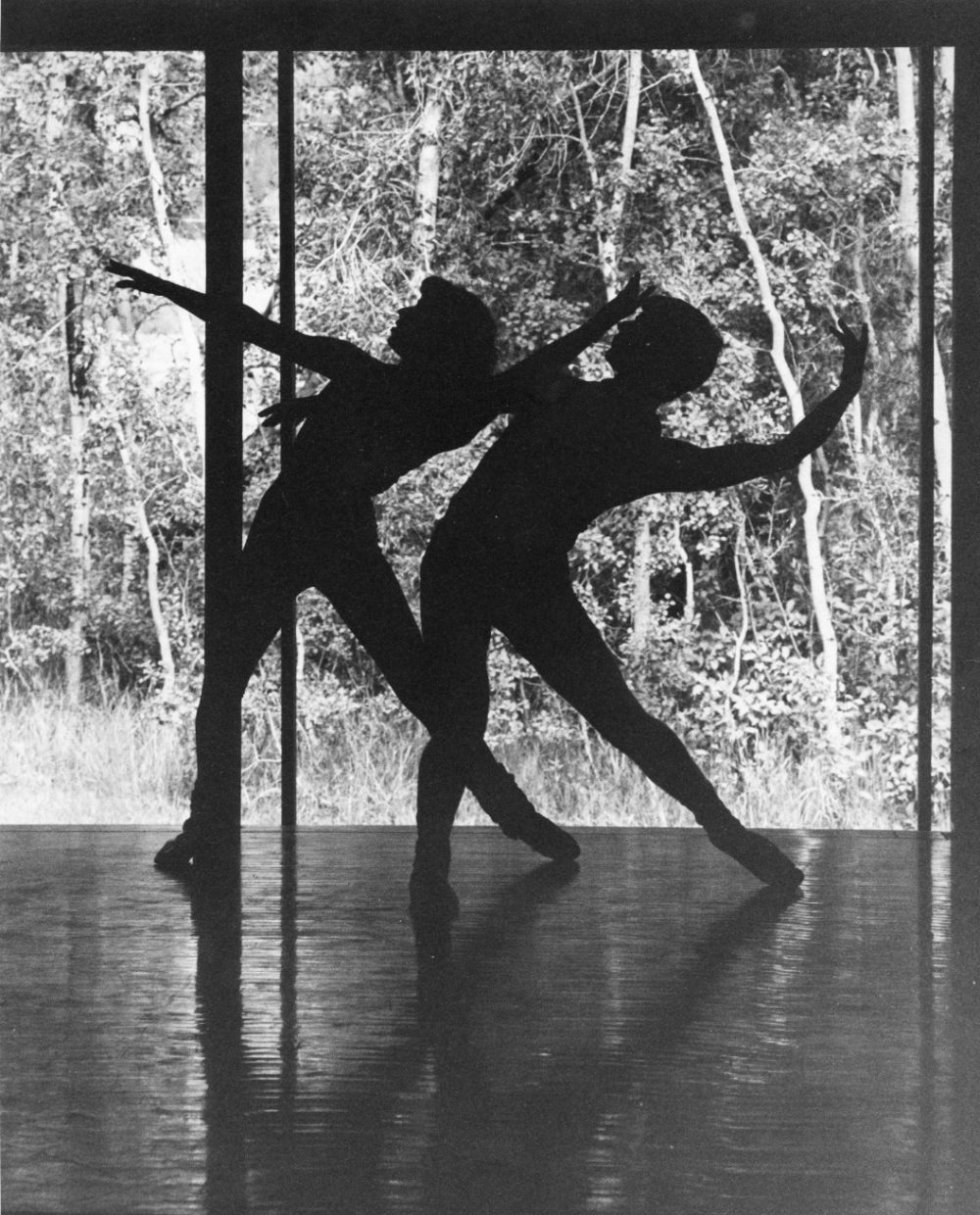 Since its inception, Perry-Mansfield has served as an oasis in the wilderness for those interested in the performing arts, including dance.