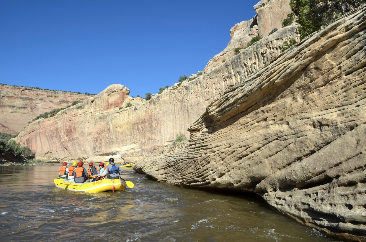 Kent Vertrees, of The Friends of the Yampa, steers a paddle boat down the ancient sandstone canyons carved by the Yampa River in Moffat County.