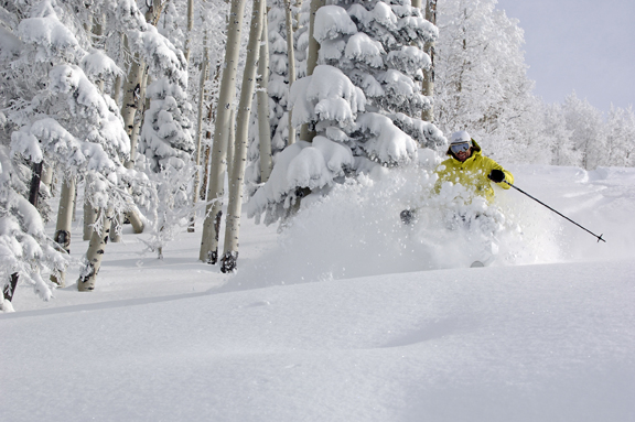 Steamboat Olympian Nelson Carmichael enjoys nearly a foot of fresh Champagne Powder snow at the Steamboat Ski Area on Friday. The resort will open top-to-bottom terrain today, catapulting to nearly 800 acres, 55 trails and five lifts.