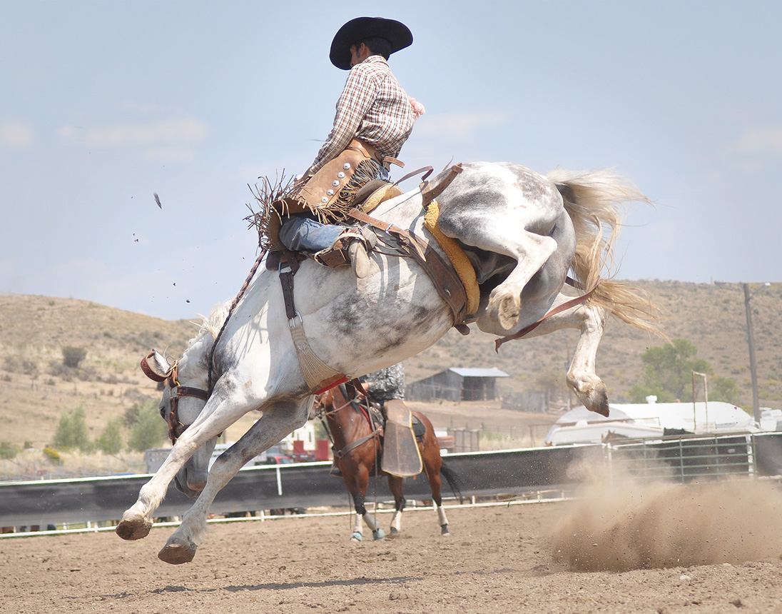 A competitor in the 2012 Rocky Mountain Bronc Riders Association Season Finals at the 2012 Routt County Fair in Hayden. Submitted by: Wendy Lind
