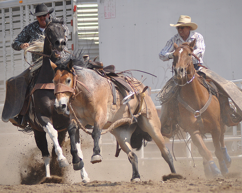 The pickup crew brings in a saddle bronc at the 2012 Rocky Mountain Bronc Riders Association Season Finals at the 2012 Routt County Fair in Hayden. Submitted by: Wendy Lind