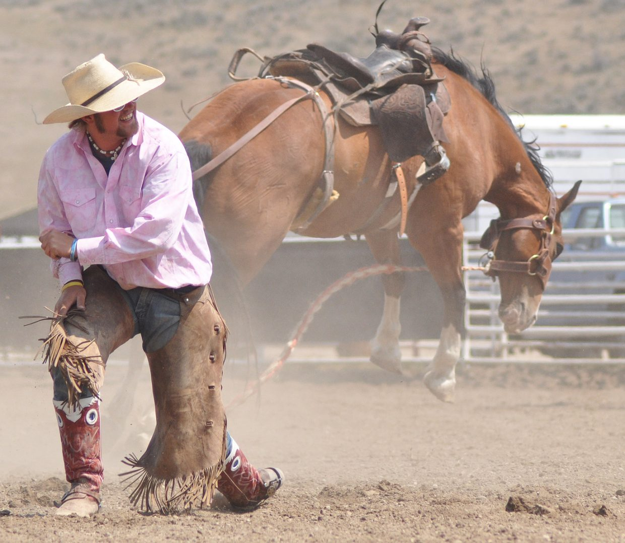 A rider in the 2012 Rocky Mountain Bronc Riders Association Season Finals post-dismount. Submitted by: Wendy Lind