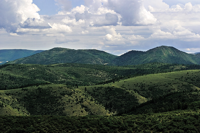A view across fields and hillsides of the Roan Plateau this week. The plateau rises 3,500 feet above the Colorado River Valley, north of Rifle and Parachute and southwest of Routt County. The plateau, a battleground for land use debates about oil and gas drilling, with a fate yet to be decided, is home to a range of wildlife including mule deer, elk, mountain lions, bald eagles and peregrine falcons.
