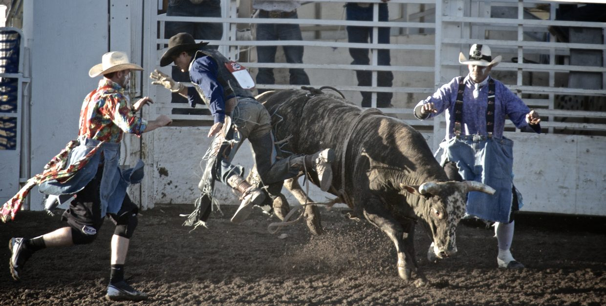 Rodeo season begins. Submitted by: Dana Stoner.