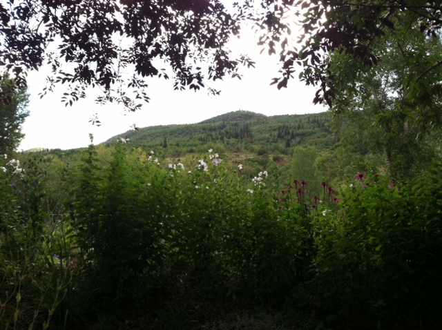 The View from the Yampa River Botanic Gardens. Submitted by: Heidi Boettcher