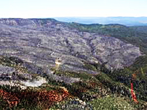This photo shows the charred swath that the Wild Rose Fire cut through the once-green hills southwest of Texas Mountain.