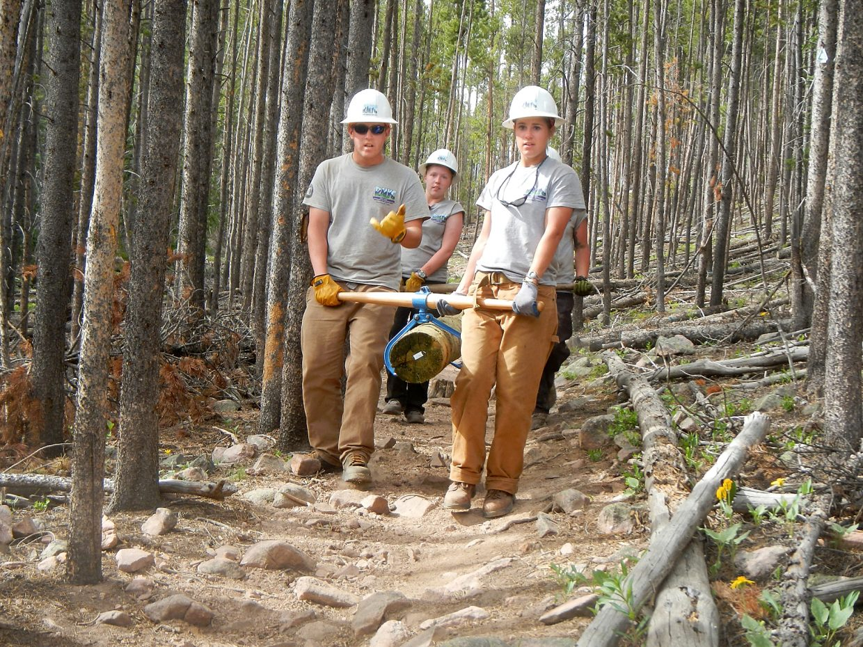 Rocky Mountain Youth Corps members Brad Huntington, from left, Kelsey Aasness and Lauren Duncan team up to remove a log from a backcountry trail through a forest of beetle-infested lodgepole pine trees.