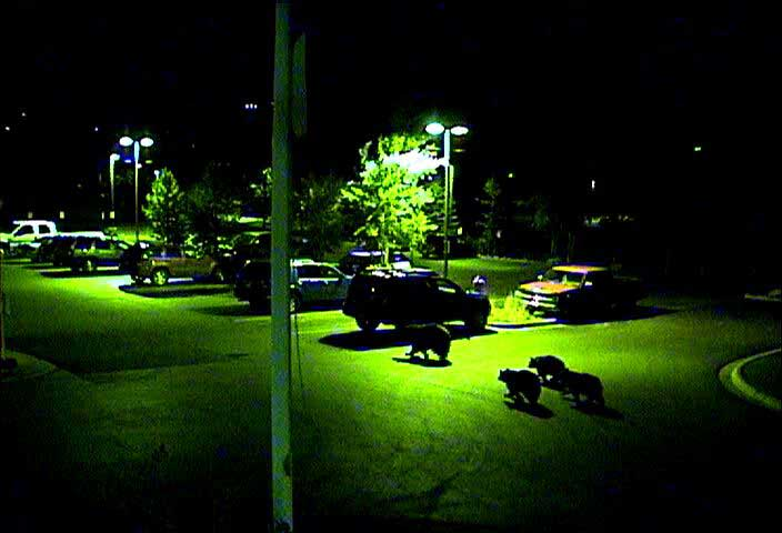This photo was taken from one of Yampa Valley Medical Center's security cameras in the Fall 2009 and is courtesy of YVMC.