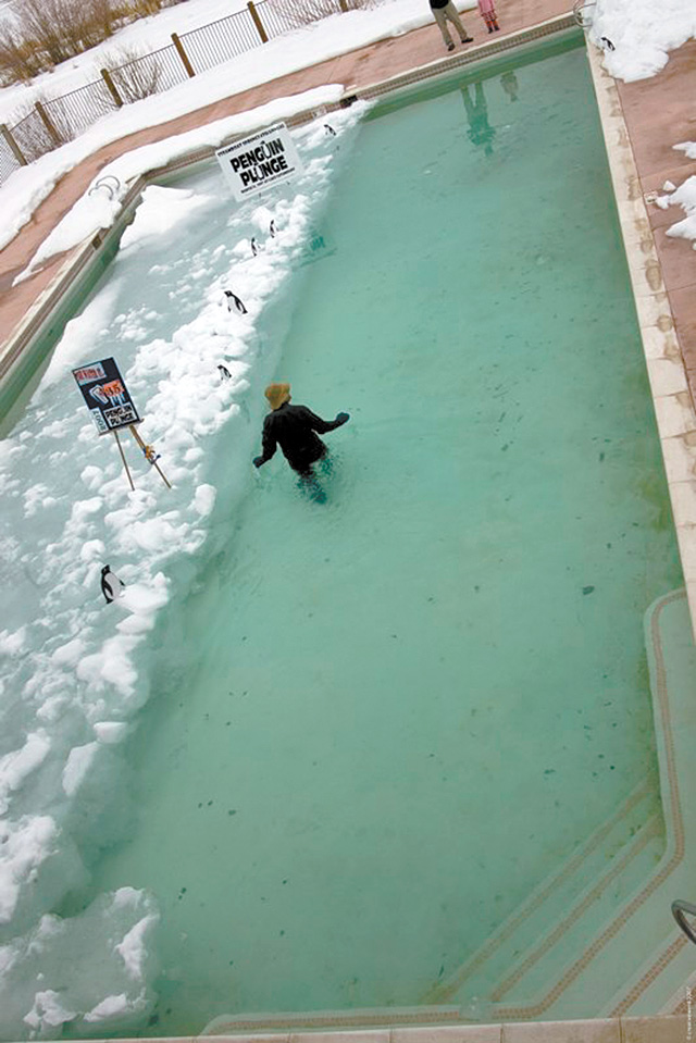 """""""The Shining"""" pool awaits Penguin Plunge participants."""