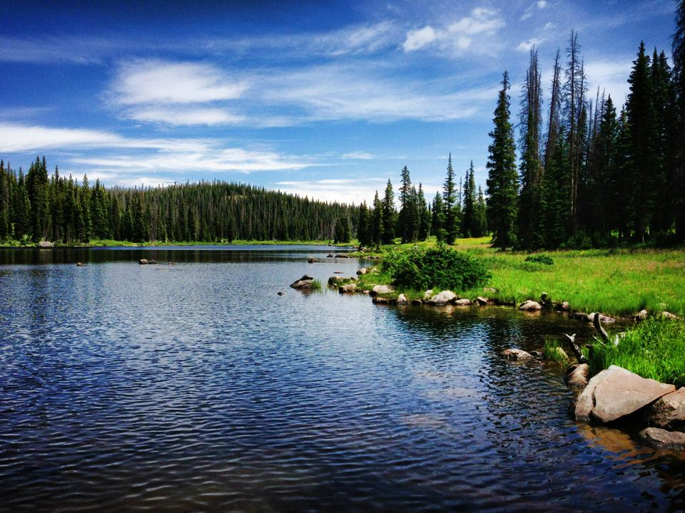 Sweet mountain bike ride to Fish Hook Lake in Steamboat. Gorgeous day! Submitted by: Travis Greenlee