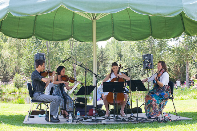 The Tesla Quartet plays at the Strings Music Festival's Music on the Green at the Yampa River Botanic Park. Submitted by: George Fargo