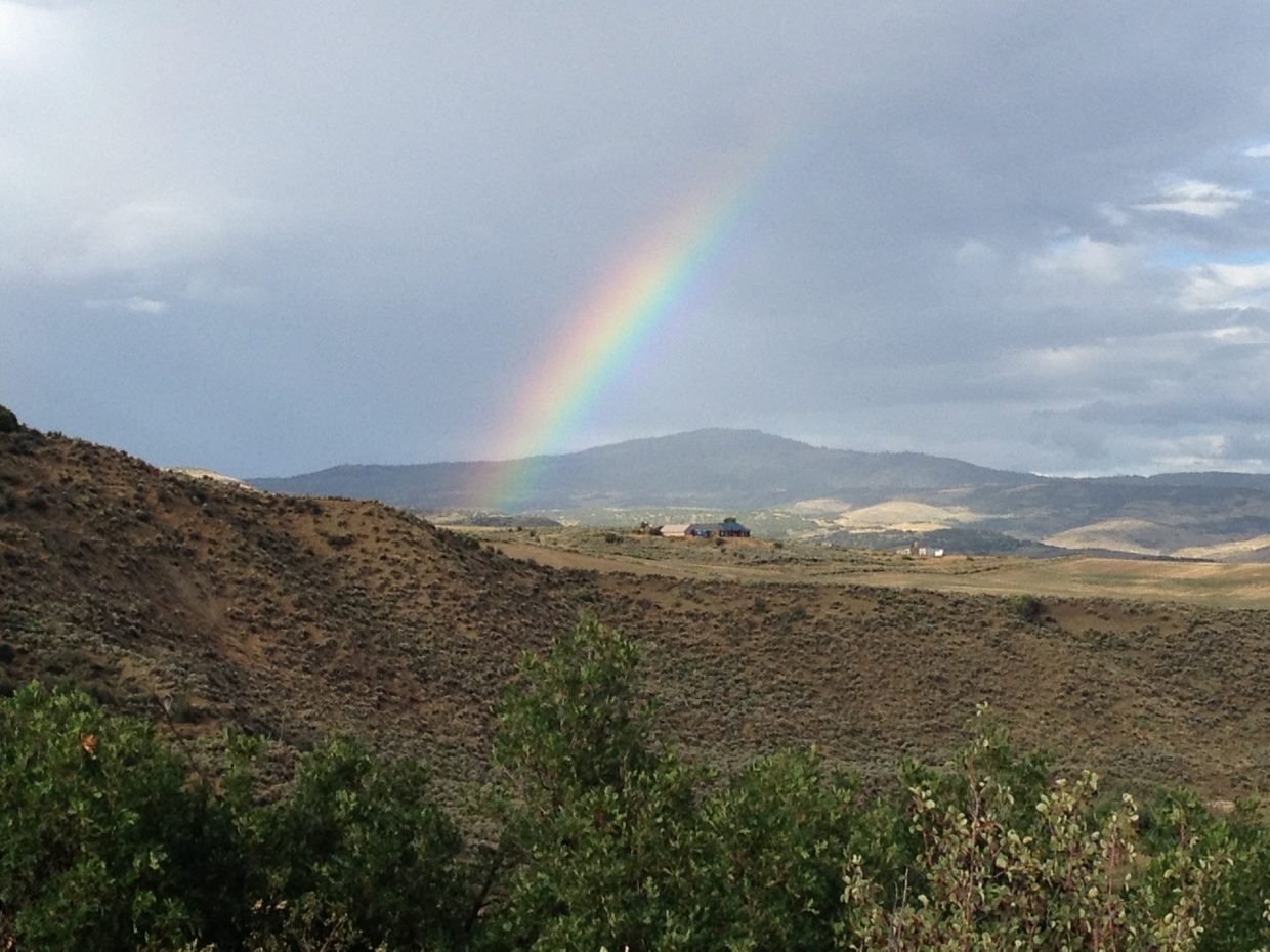 Hayden rainbow. Submitted by: Julie Smith