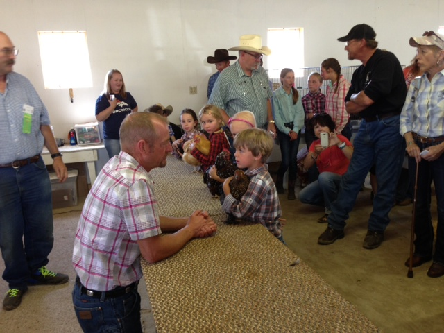 Danny McLaughlin shows his rabbit at the fair Wednesday. Submitted by: Lauren McLaughlin
