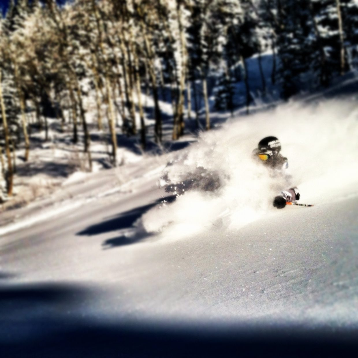 Wesley Park Shredding on a pow day. Photo submitted by Wesley Park