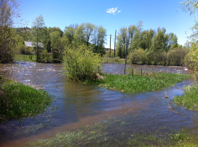 Waters were creeping up along the Yampa River's banks Thursday.