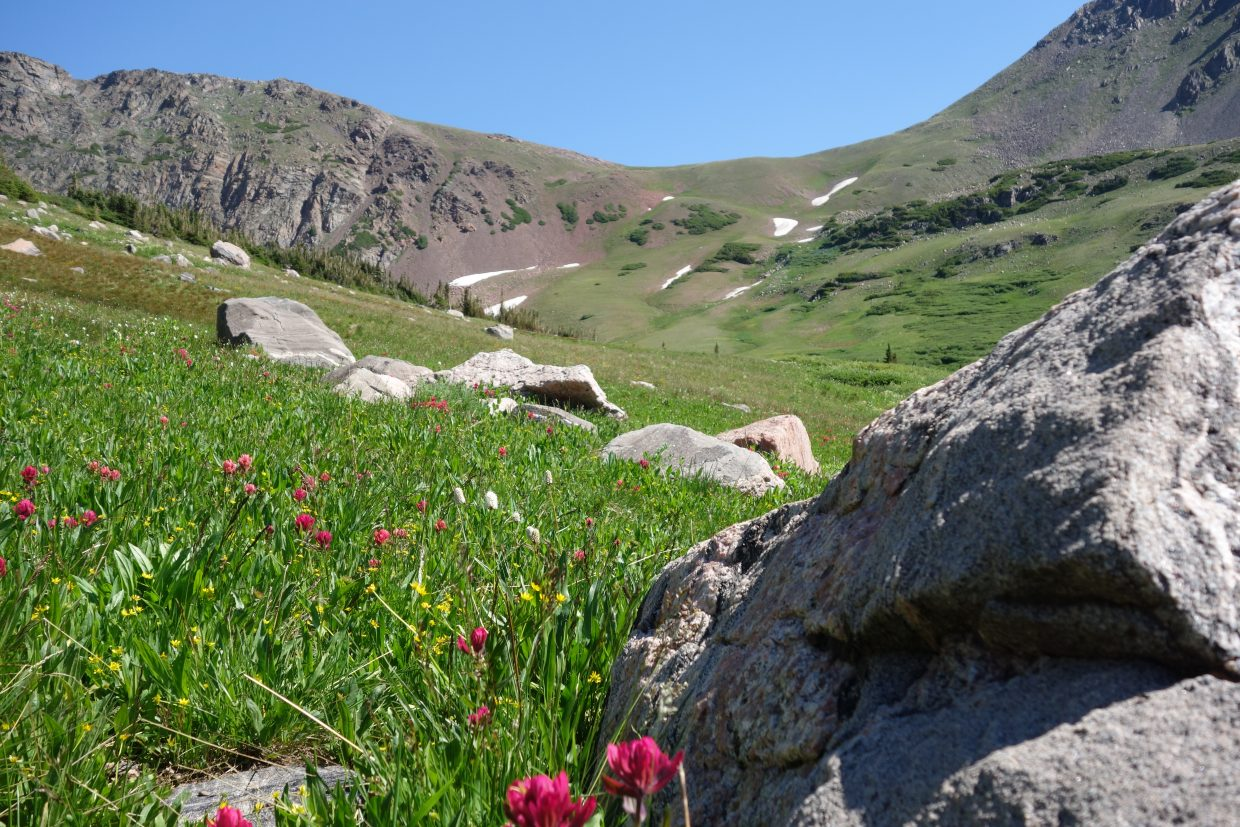 Red Dirt Pass. Photo taken on a backpacking trip July 20. Submitted by: Diane Miller