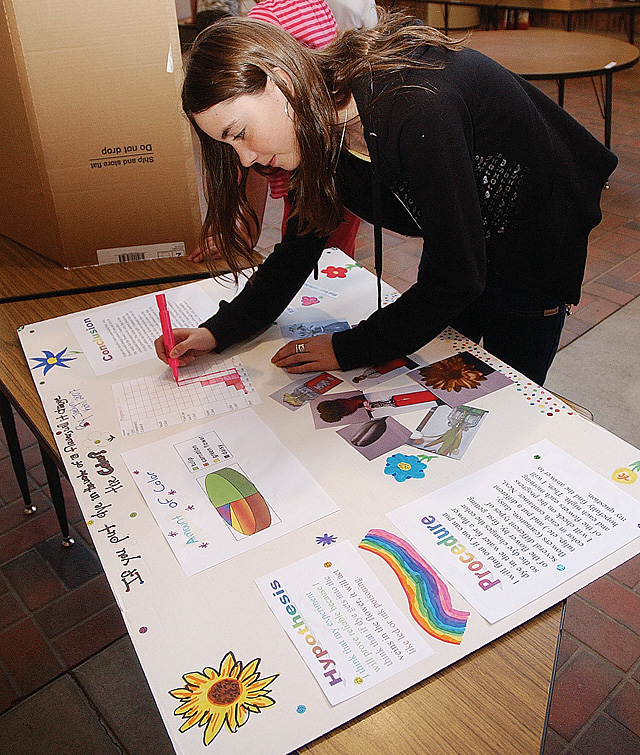 Strawberry Park Elementary School fifth-grader Jaelyn Kohl readies her science fair project Thursday in the school's arcade. Her project looked at what would happen when flowers were placed in dyed water.