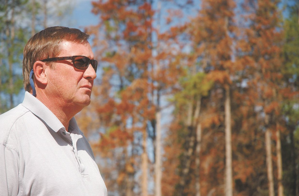 Doug Allen, vice president of mountain operations for Steamboat Ski and Resort Corp., vividly remembers the Oct. 24, 1997, blowdown that ignited the local spruce beetle boom.