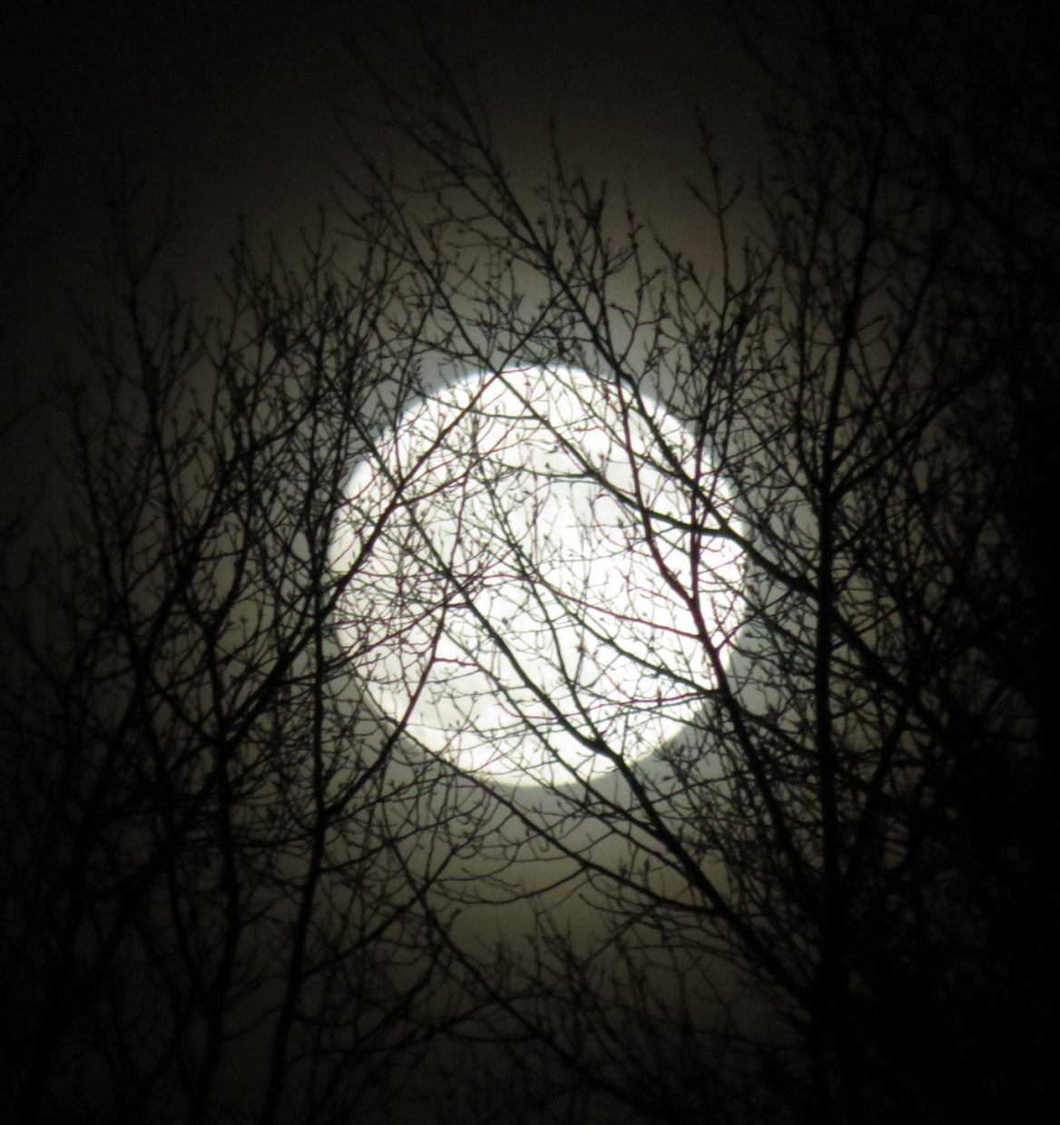 Super moon over Steamboat.