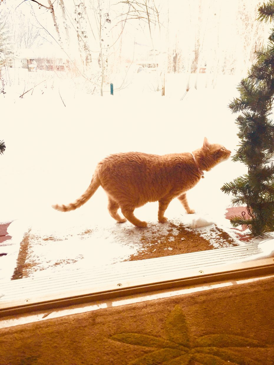 White Christmas - can't get out the door.