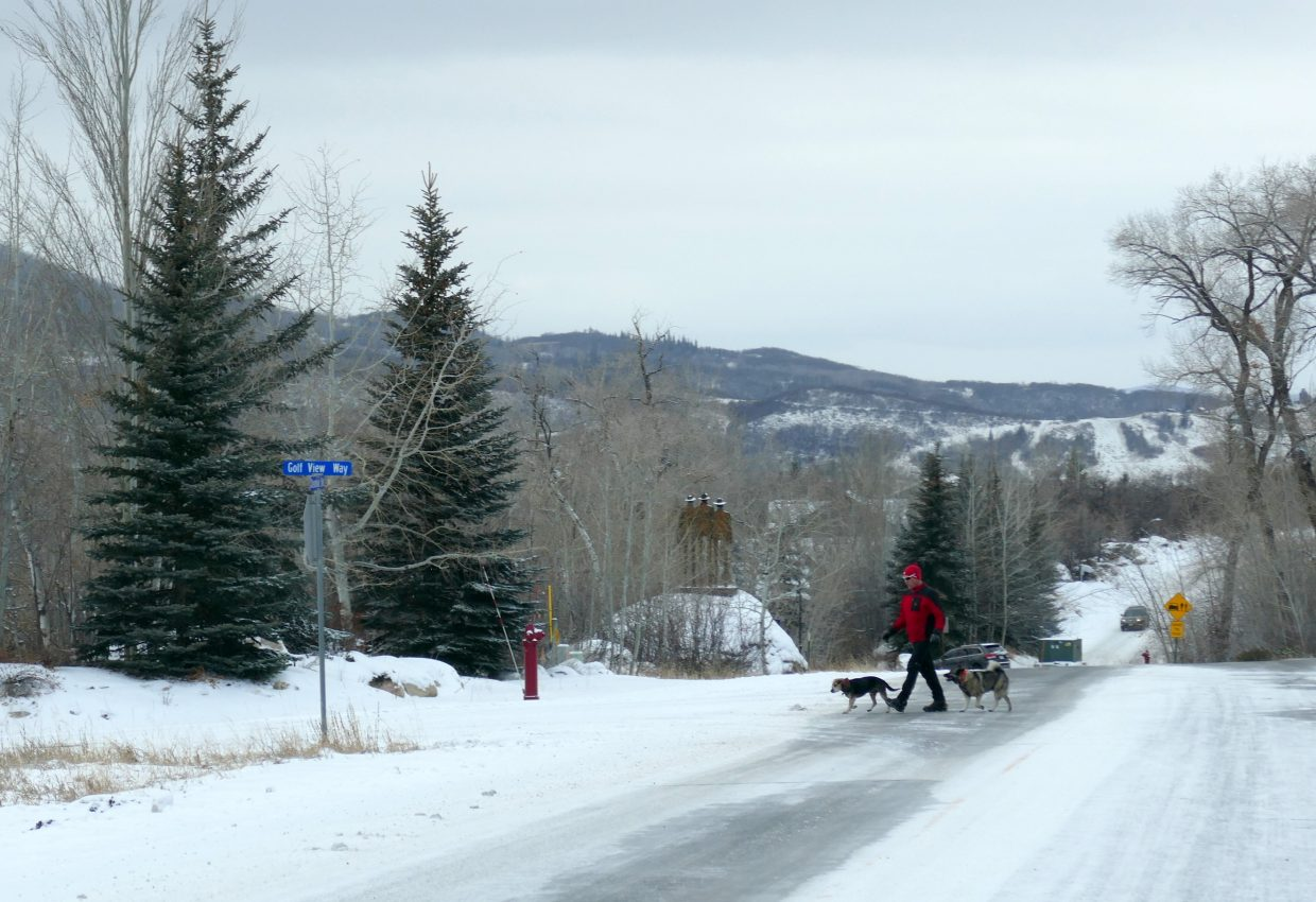 Snowy day for walking with the dogs in Steamboat.