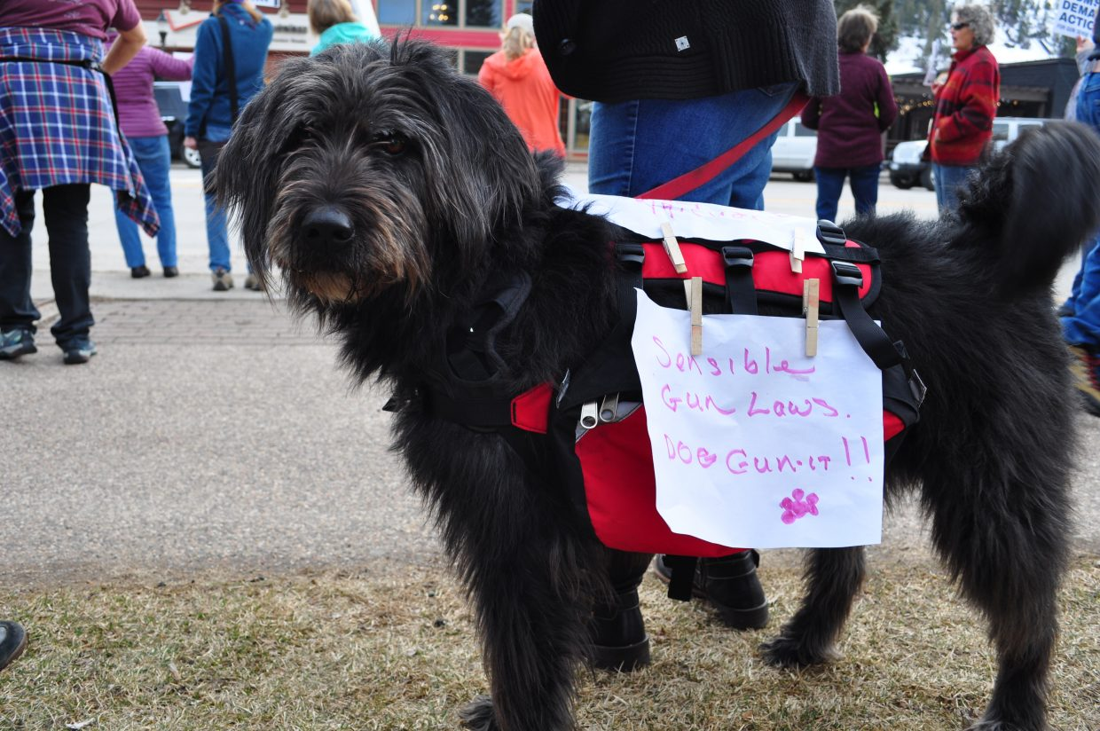 Stella was one of many furry friends to attend the March for Our Lives demonstration on Saturday in Steamboat Springs.