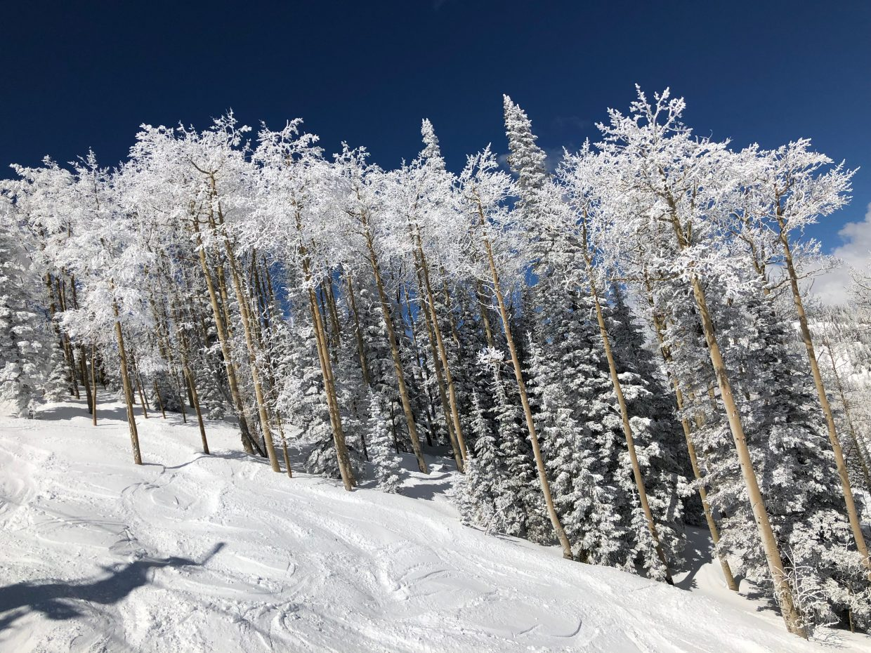 Mid-March in Steamboat Springs.