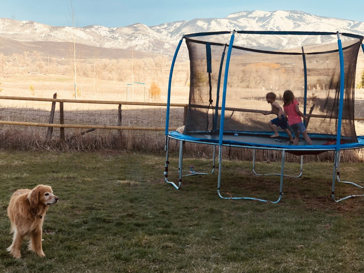 Spring arrives in Steamboat Springs, at least for an afternoon, as two children play on the trampoline and a dog looks on.