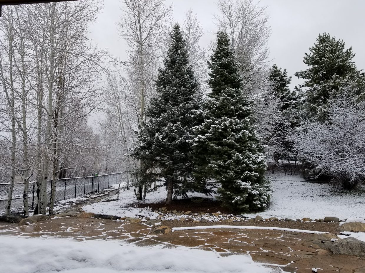 Snow still decorates trees along certain sections of the Yampa River Core Trail.
