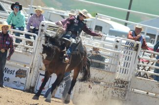 Bareback And Bull Riding This Weekend At Hayden S 2nd