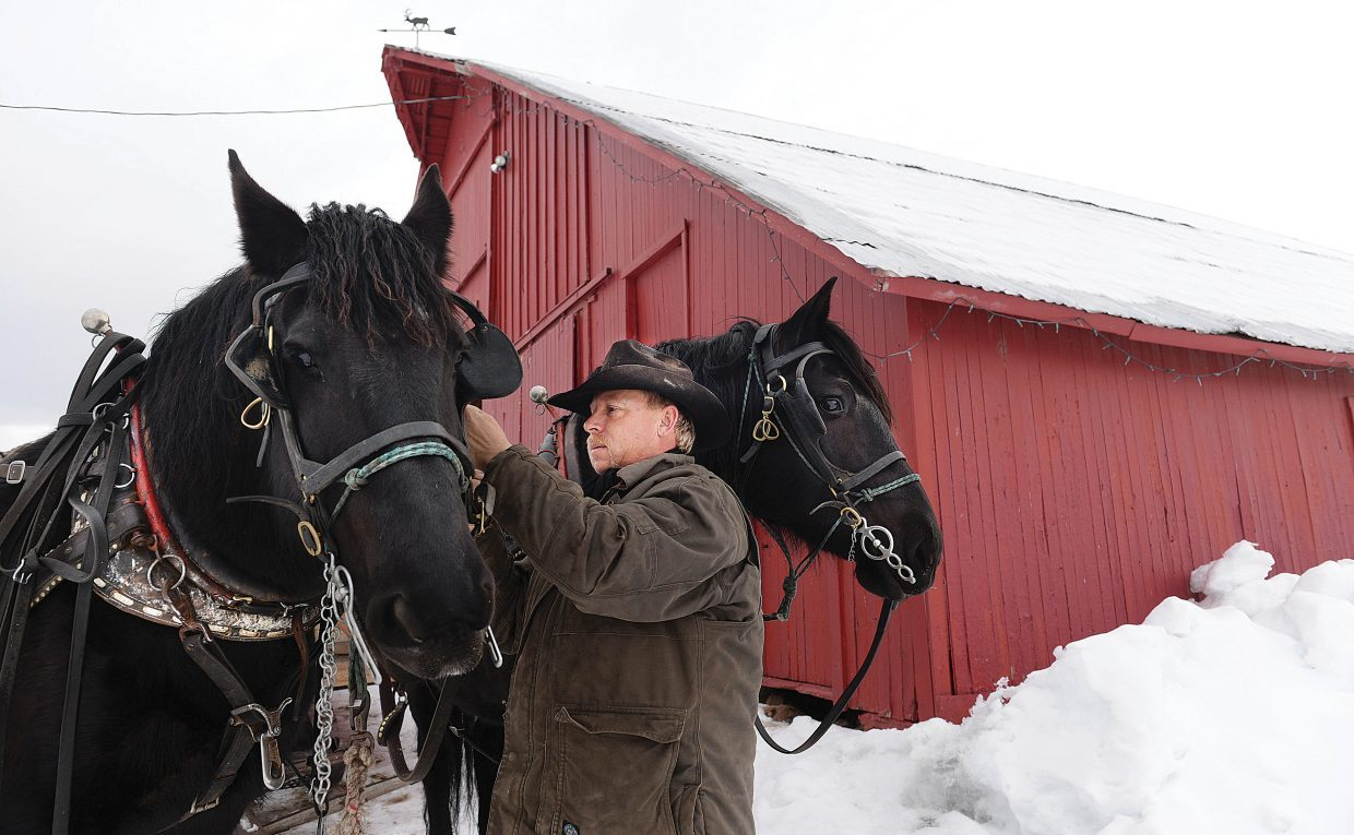 Matt Belton secures the bridle on Bits before heading out to feed cattle.