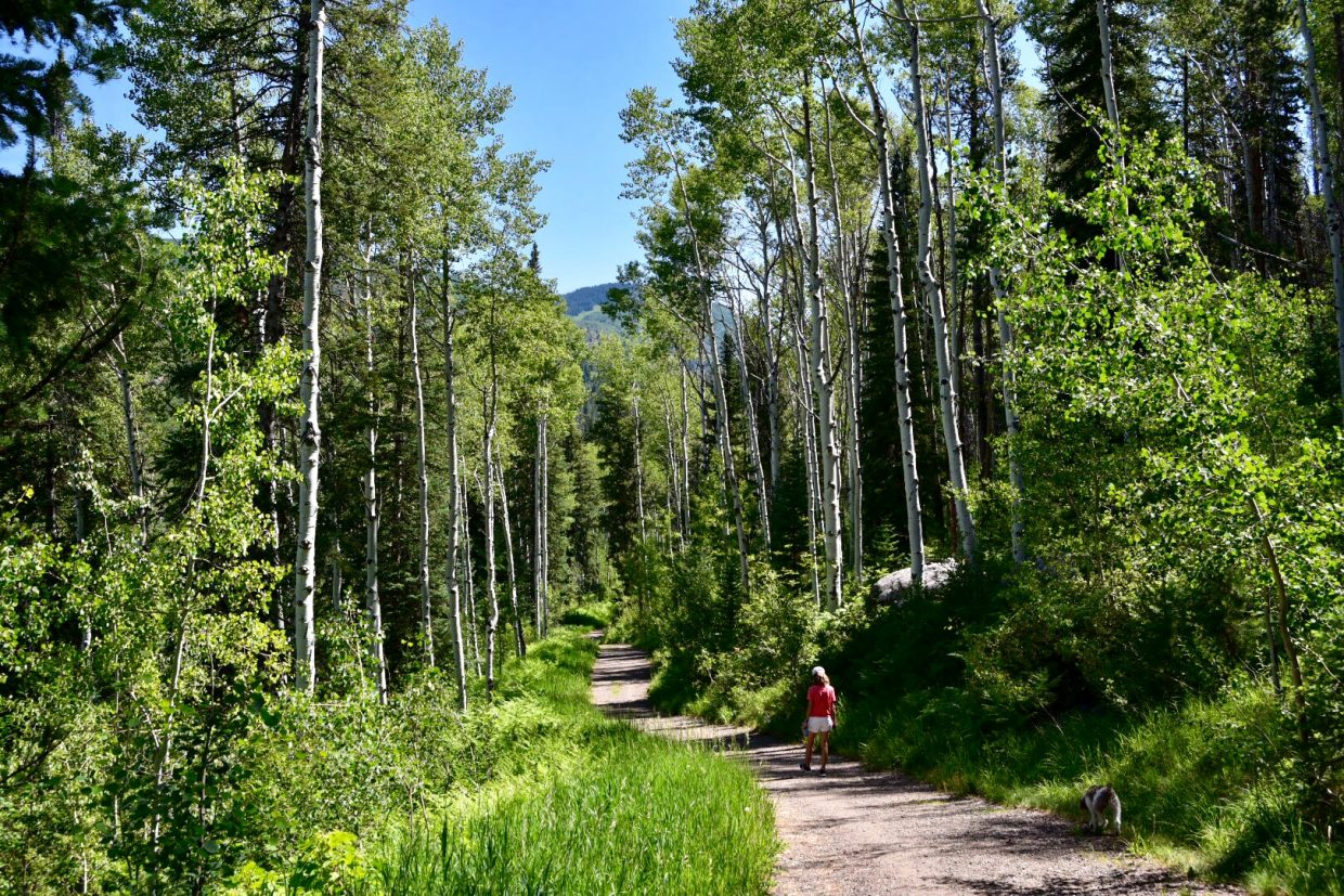 Sanctuary Trail bustles with cyclists and hikers.