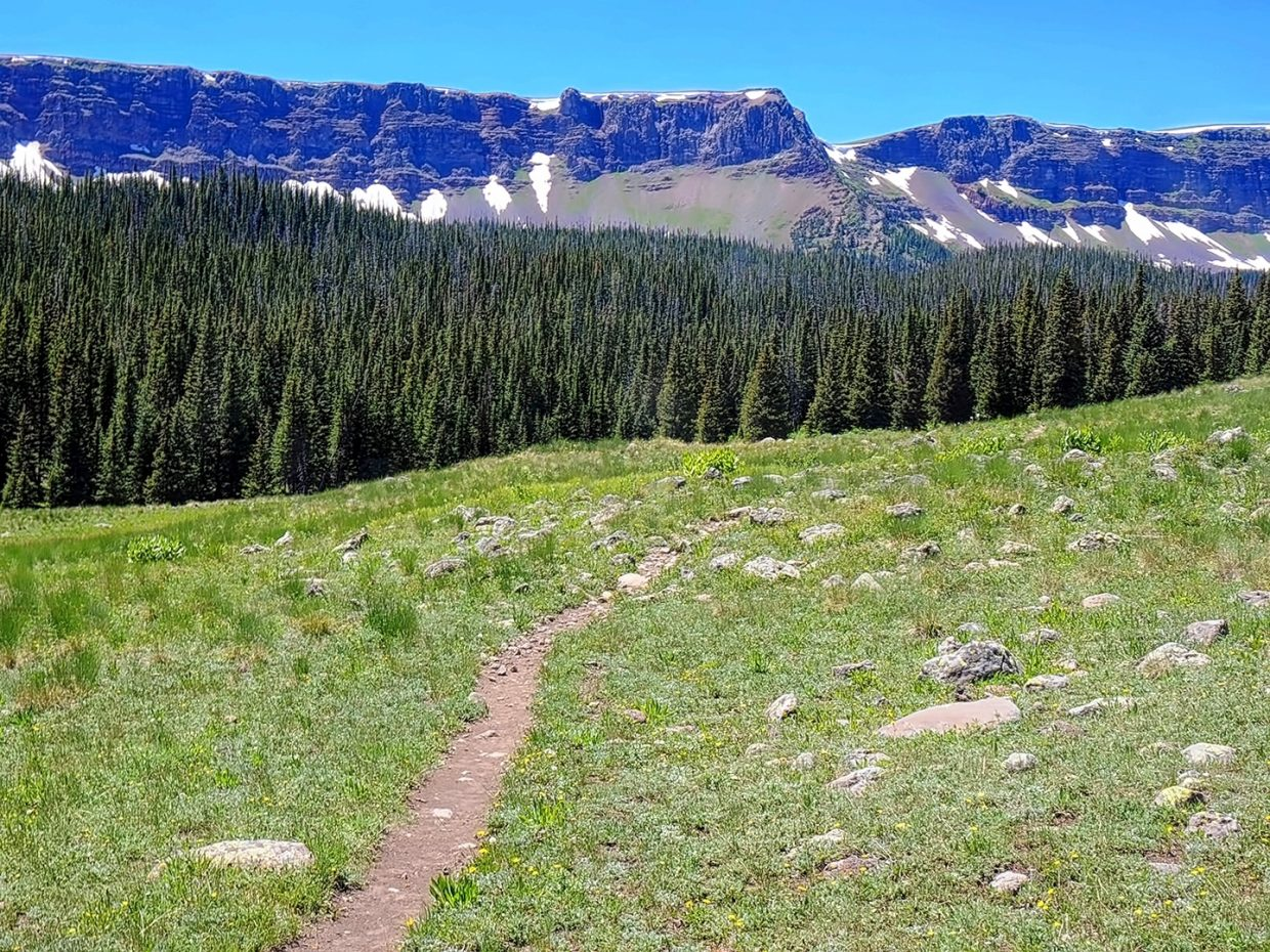 Take a walk on the wild side. Mandall Pass, Flat Tops Wilderness Area