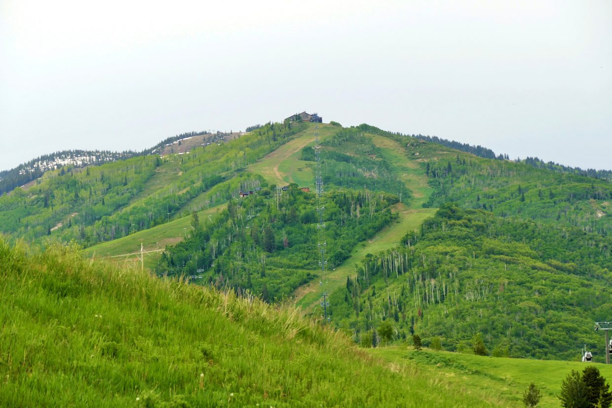 Steamboat slopes are very green.