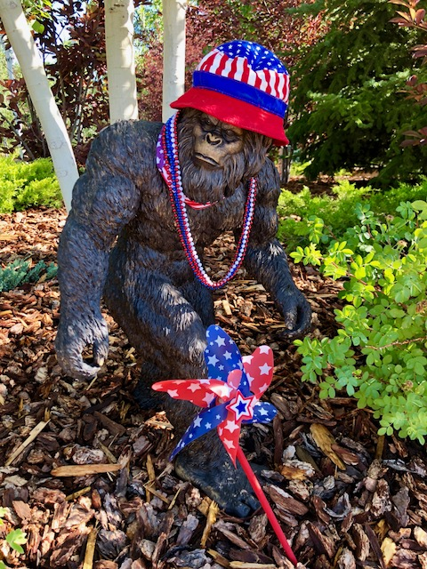 A yeti gets ready for the Fourth of July.