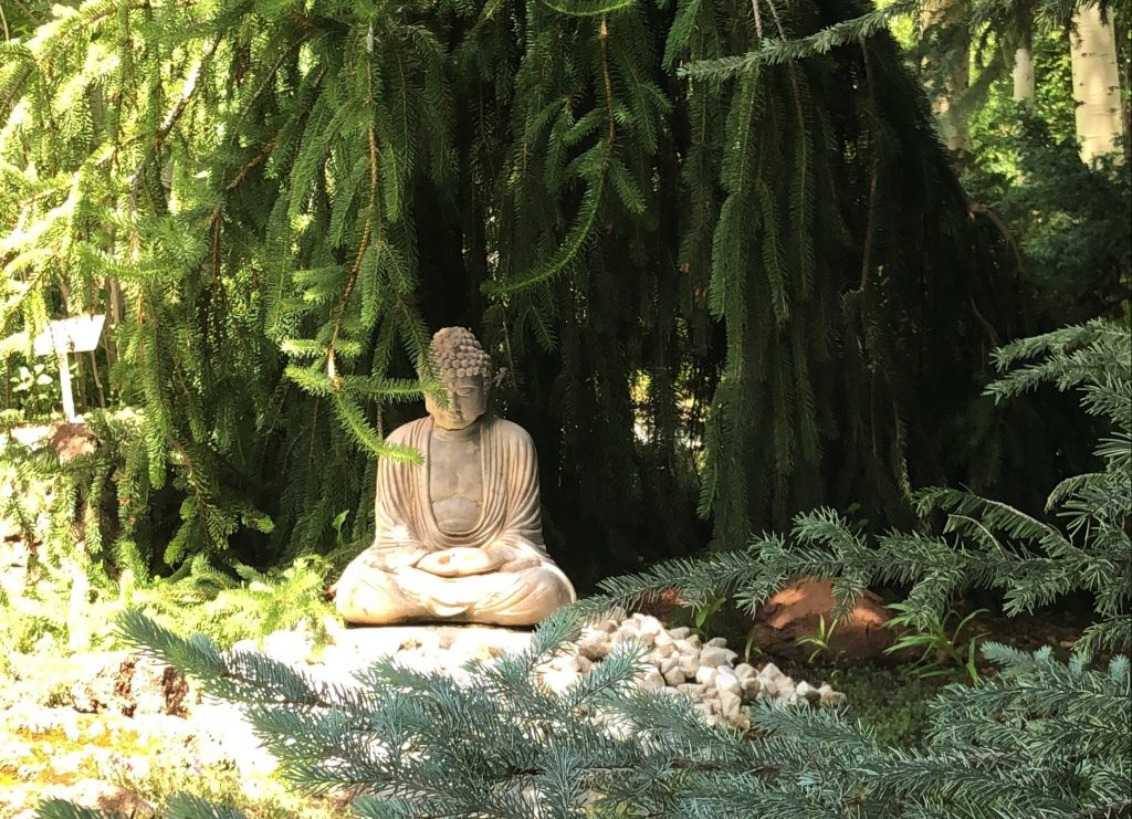 A buddha statue hides among the shade in the Yampa River Botanic Park. It was stolen this week.