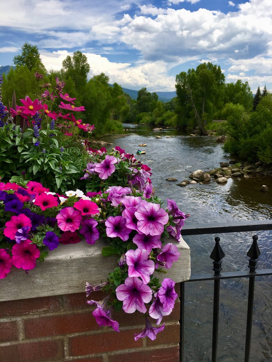 Flowers bloom on a bridge overlooking the Yampa River.