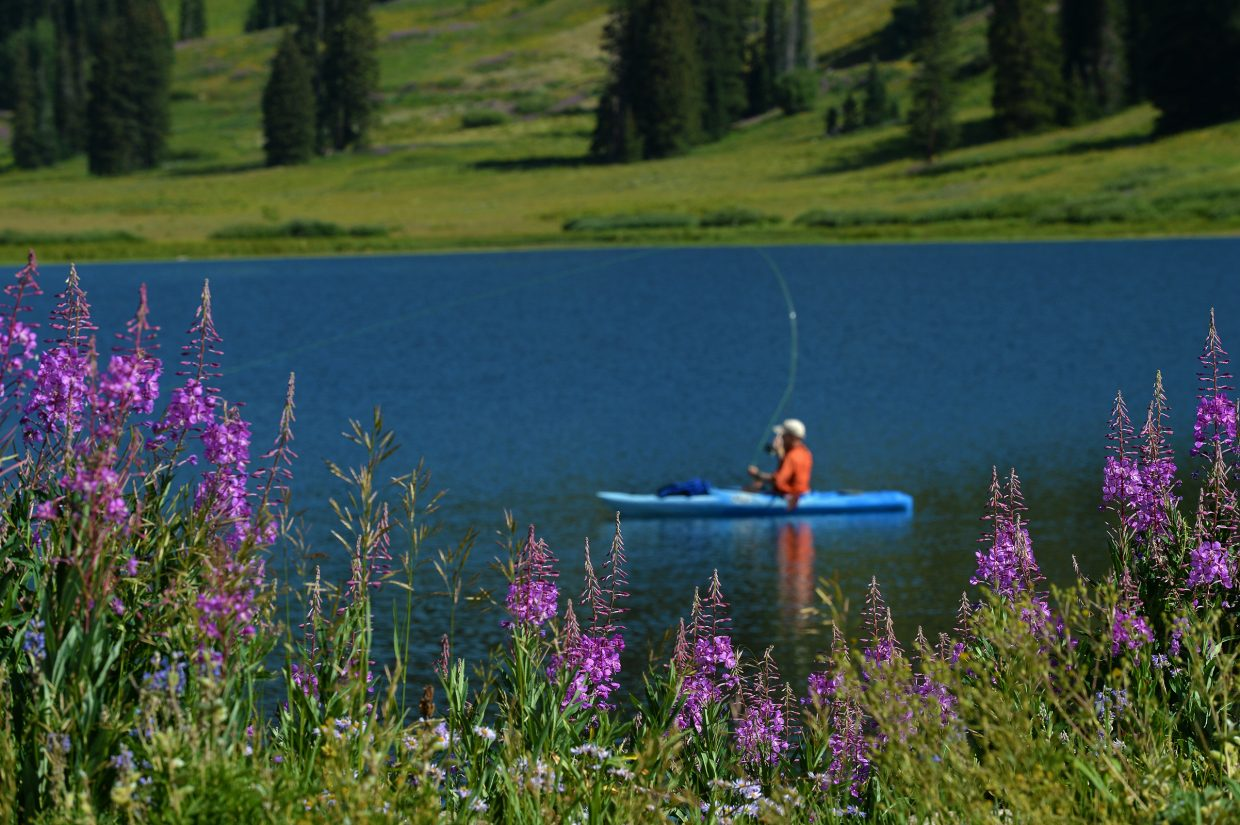 Fly fisherman, Allen Branden, casts for rainbow trout on Dumont Lake this morning, surrounded by wildflowers.