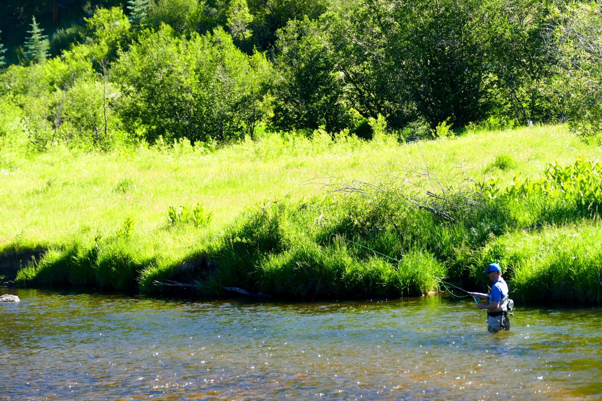 Pictures from Steamboat area include fishing at Sarvis Creek. Sarvis Creek State Wildlife Area is at 7,000 feet in elevation and has 311 acres of mountain and stream habitat.
