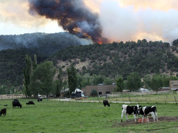 Basalt wildfire from Tuesday.