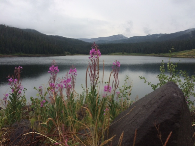 Rainy day at Sheriffs Reservoir