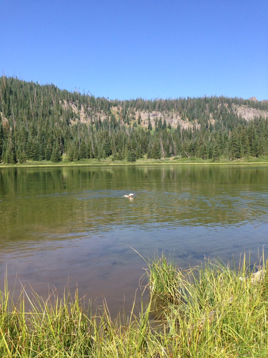 Mosquito Lake, Flat Tops Wilderness Area.