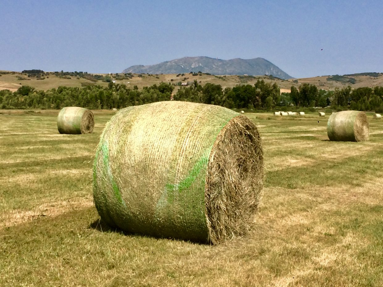 Hay bales sit in a field with the Sleeping Giant looking from a distance.