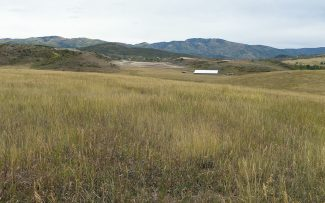 Let's Vote committee reaches signature threshold for West Steamboat annexation election
