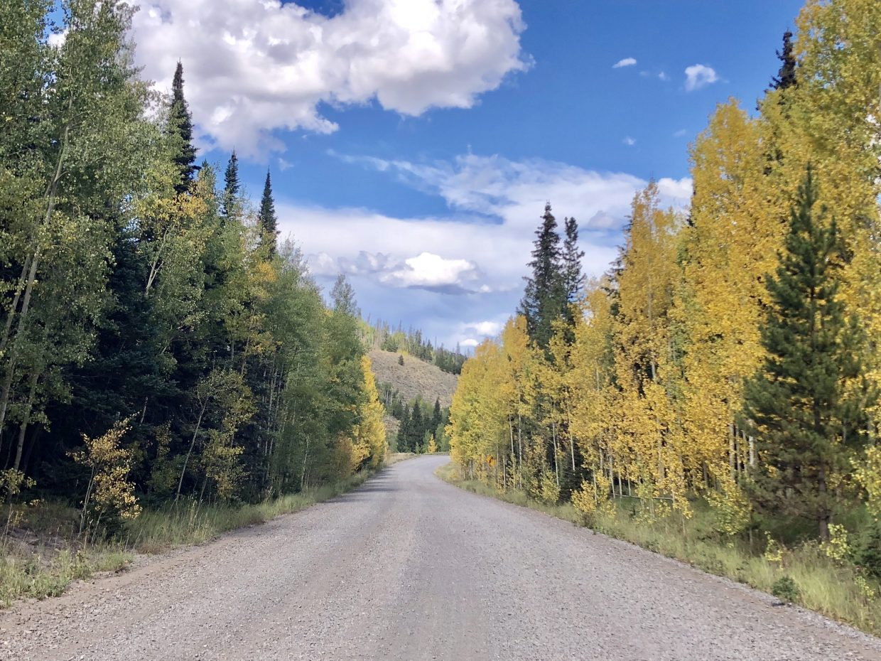 Summer holds on to one side of the road while fall arrives slowly on the other.