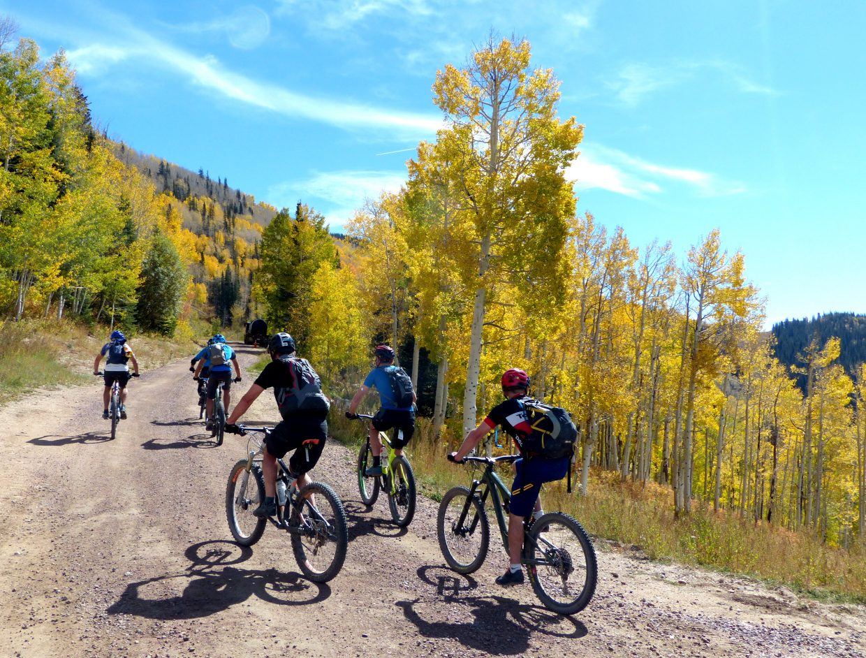 Cyclists in Steamboat.