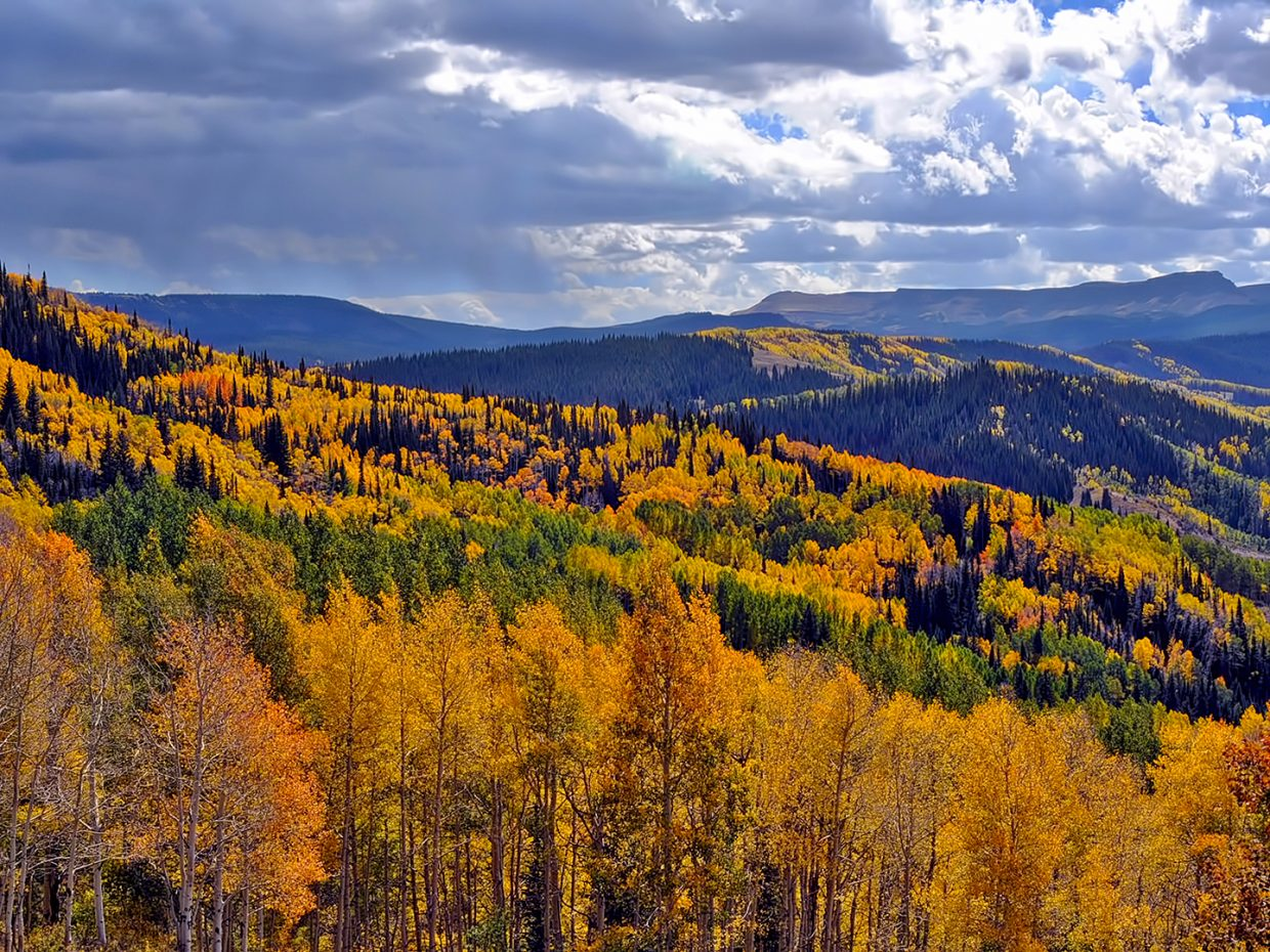 Dunckley Pass, pictured here in 2018, has begun its fall transformation. Patches of aspens have turned yellow, but a moisture-driven fungal infection has caused some leaves to become brown or gray.